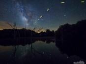 Lake Sugema Firefly